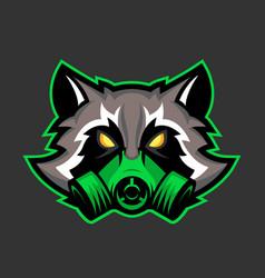 Gas mask raccoon mascot sport or esports racoon vector