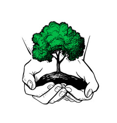 hands holding tree ecologic safe sign concept vector image