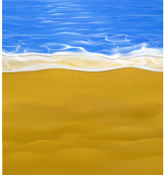 isolated little part sea and sand beach vector image