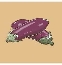 Eggplants in vintage style Colored vector image vector image