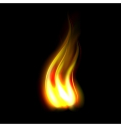 Unique realistic fire flame vector image