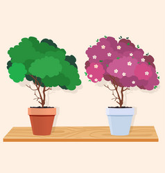 A green tree and a pink blossoming tree vector