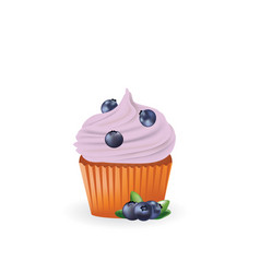 blueberry cupcake vector image