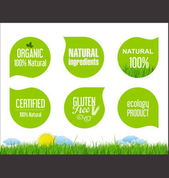 labels and emblems of ecology collection vector image