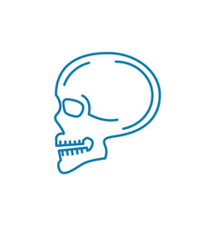 scanning of the skull linear icon concept vector image