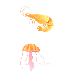 Set of watercolor seaweed corals and stones vector