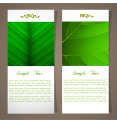 Two bio banners vector