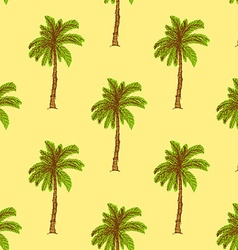 Sketch palm in vintage style vector image