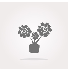 flowers icon button app web icon vector image