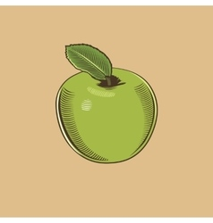 Apple in vintage style Colored vector image