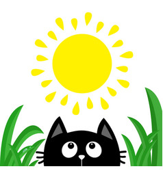 Black cat face head silhouette looking up to sun vector