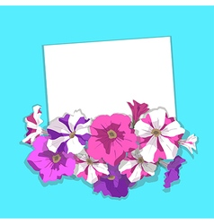 Card with flowers petunias vector