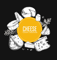Cheese collection 4 vector