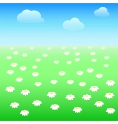 Field with daisies vector image