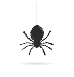 Hand drawing spider icon with shadow vector