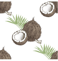 seamless pattern with hand drawn coconut with half vector image