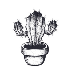 thorny cactus in a flowerpot hand drawn ink vector image