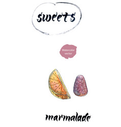 Sweet marmalade watercolor vector