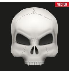 Creative Human skull vector image