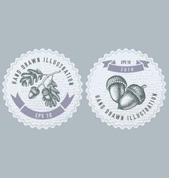 Monochrome labels design with oak vector