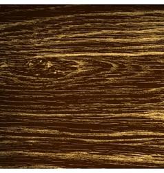 Dark Oak Texture vector image