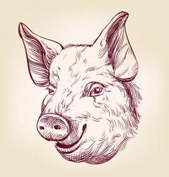pig hand drawn llustration realistic sketch vector image