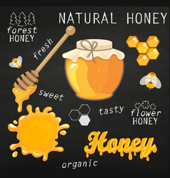 Set of jars with honey vector