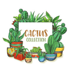Banner with hand drawn cactus in boxes plants vector