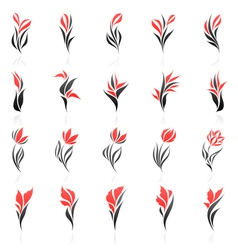 flowers logo template set vector image