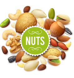 Nut Collection vector
