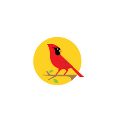 red cardinal bird nature sun logo vector image