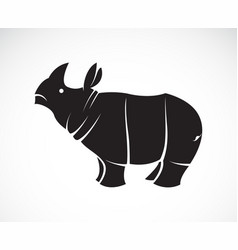 rhinoceros on a white background wild animals vector image