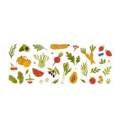 set different fresh vegetables fruits berries vector image