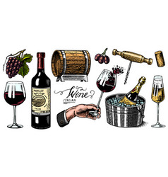 wine set alcoholic drink in hand sparkling vector image