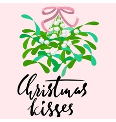 Mistletoe with pink bow and curly ribbon vector