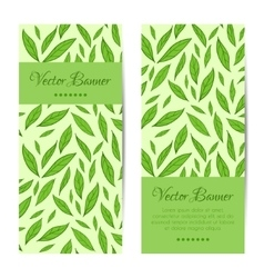 Banners cards set Green leaves pattern vector