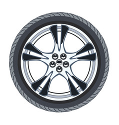 car tire and alloy wheel vector image