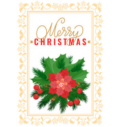 christmas decoration poinsettia flower mistletoe vector image