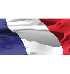 france flag waving vector image