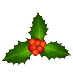 Holly vector