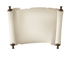 scroll paper banner vector image