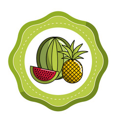 sticker watermelon and pineapple fruit icon vector image