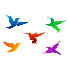 Flying hummingbirds vector image vector image