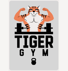 Gym sport club poster or logo with muscular tiger vector