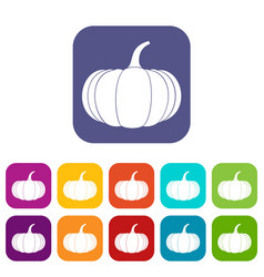 Ripe pumpkin icons set vector