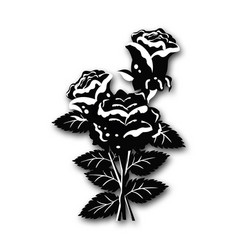 rose black and white vector image
