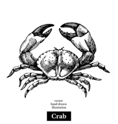 Hand drawn sketch seafood black and white vintage vector image
