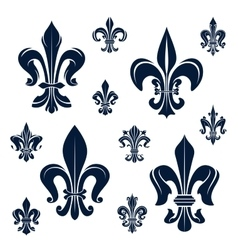 French fleur-de-lis heraldic symbols and flowers vector image