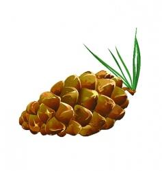 pinecone fallen vector image vector image
