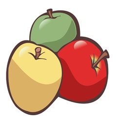 three apples vector image vector image